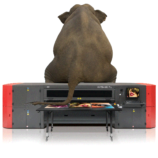 Large format printing Northampton